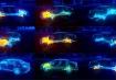 【トヨタセーフティセンスPとC】テクノロジーの進化って早すぎませんか?