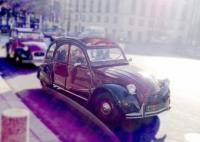 誕生は1769年! 自動車の歴史をみてみよう!