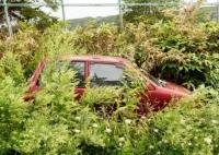 放置自動車はどう対応すべき?放置車両の廃車・撤去方法